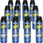 Raid Flying Insect Spray 300816CT
