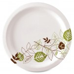 Pathway Heavyweight Paper Plates SXP10PATHCT