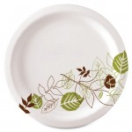 Pathways Design Everyday Paper Plates UX7WSCT