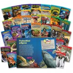 Shell TIME for Kids: Challenging 30-Book Spanish Set 20222