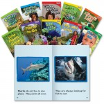 Shell TIME for Kids: Emergent 1st-Grade 30-Book Set 18393