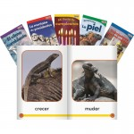 Shell TIME For Kids Informational Text Grade K Readers Set 3 10-Book Spanish Set 25856