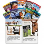 Shell TIME for Kids: Nonfiction English Grade 2 Set 2 16103